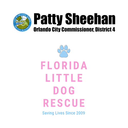 Florida Little Dog Rescue / Commission Patty Sheehan